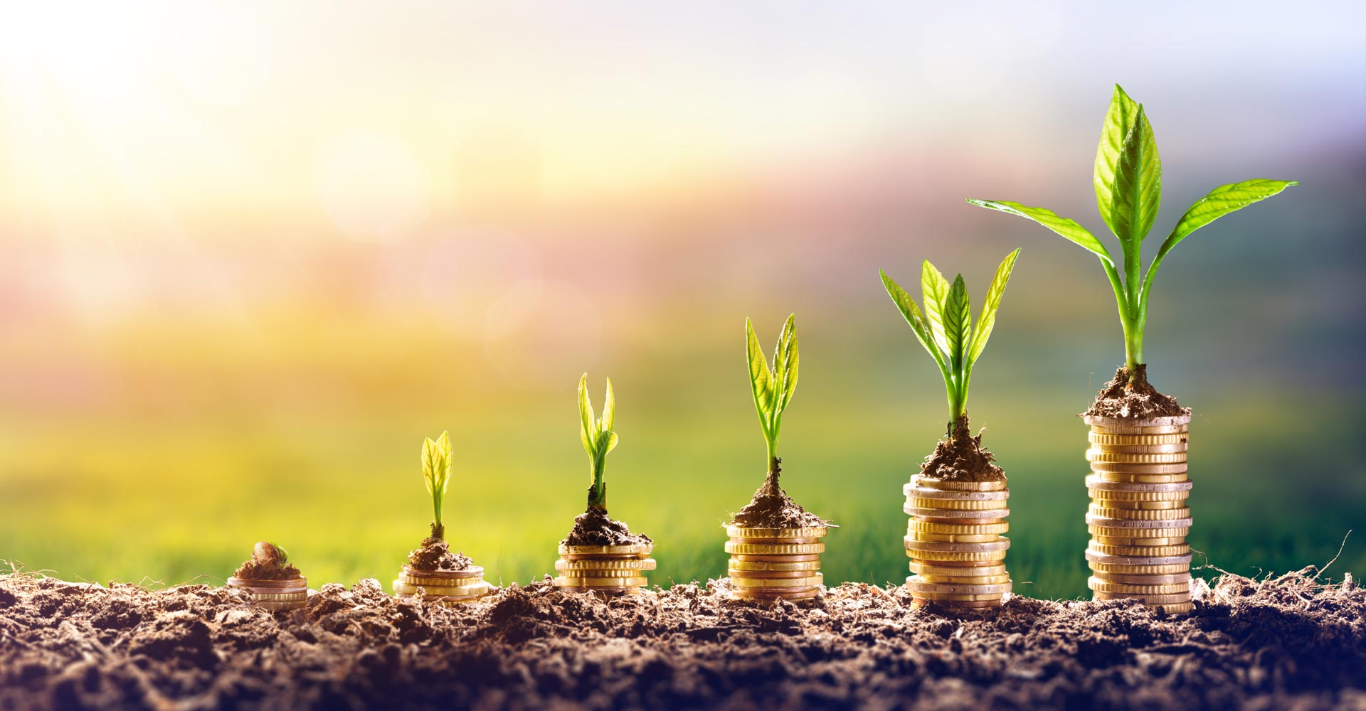 Energy Efficiency for Small Medium Enterprises